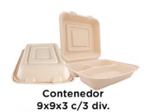 Contenedor 9x9x3 c/3 div.