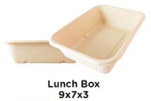 Lunch Box 9x7x3