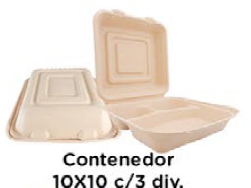 Contenedor 10x10 c/3 div.