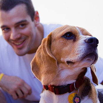 How to Choose the Right Collar for your Dog