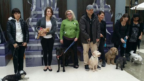 What is the CAMH Pet Therapy Program?