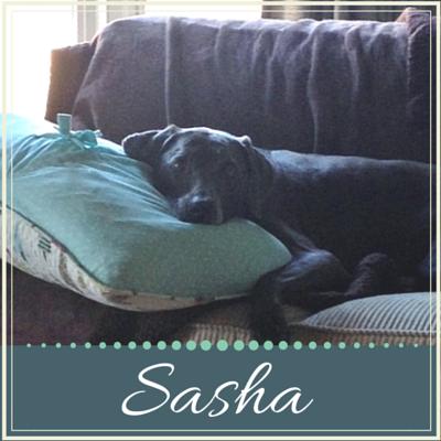 Sasha's Story