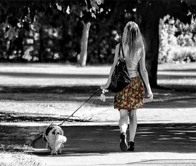 Do Potty Walks Take Forever?