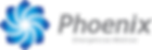 Logo_Phoenix_Emergências_-_2018.png