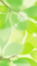 top_left|美容美髮紋繡接睫毛微刺青指甲新秘等證照檢定及創業教學。靚妍妍莉的美容丙級,美容乙級,美髮丙級,美髮創業,紋繡,繡眉,接睫毛,微刺青,凝膠指甲(光療指甲),水晶指甲,指甲彩繪,新娘秘書
