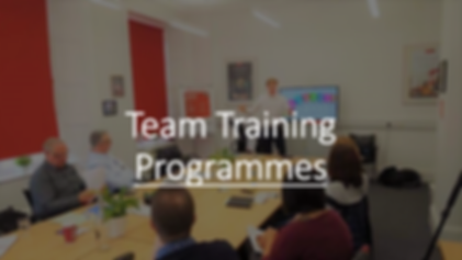 Website team training graphic.PNG