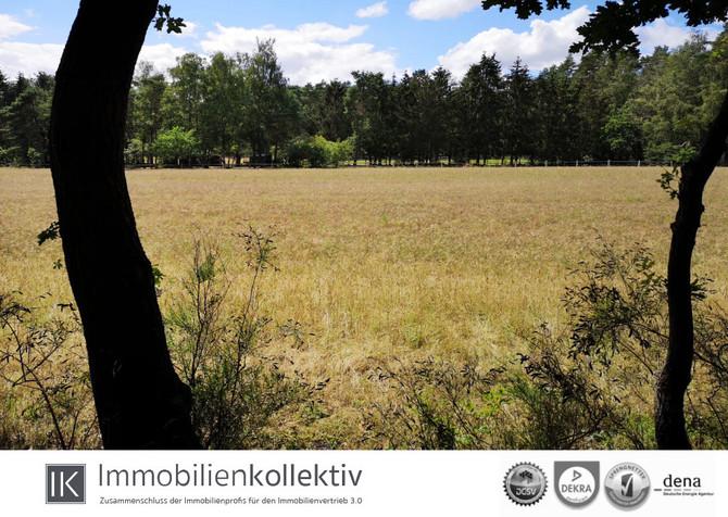 Natur pur - idyllisches Baugrundstück in Stelle - Ashausen OT Büllhorn !!!