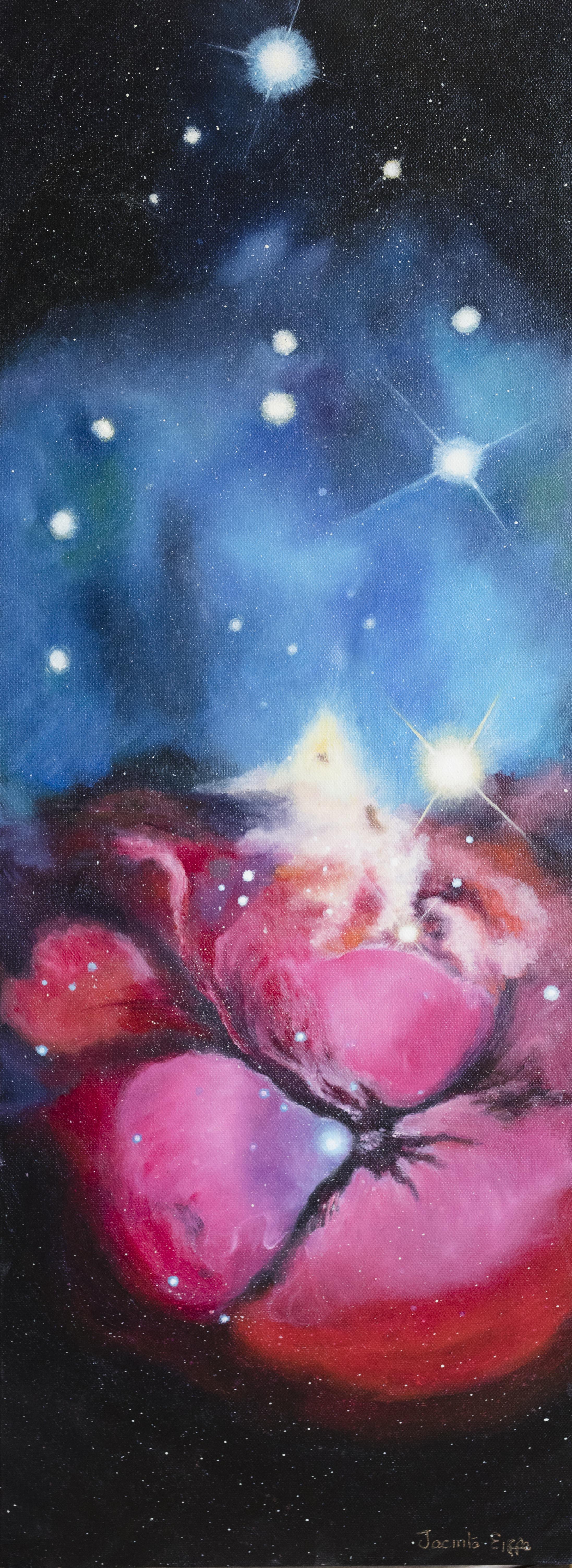 Carina Nebula II