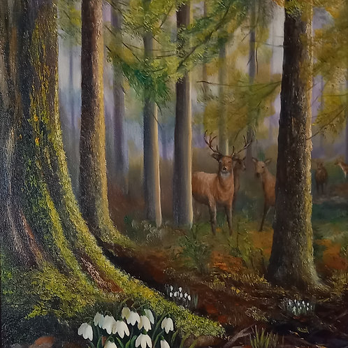 SOLD - Dunsany Wood