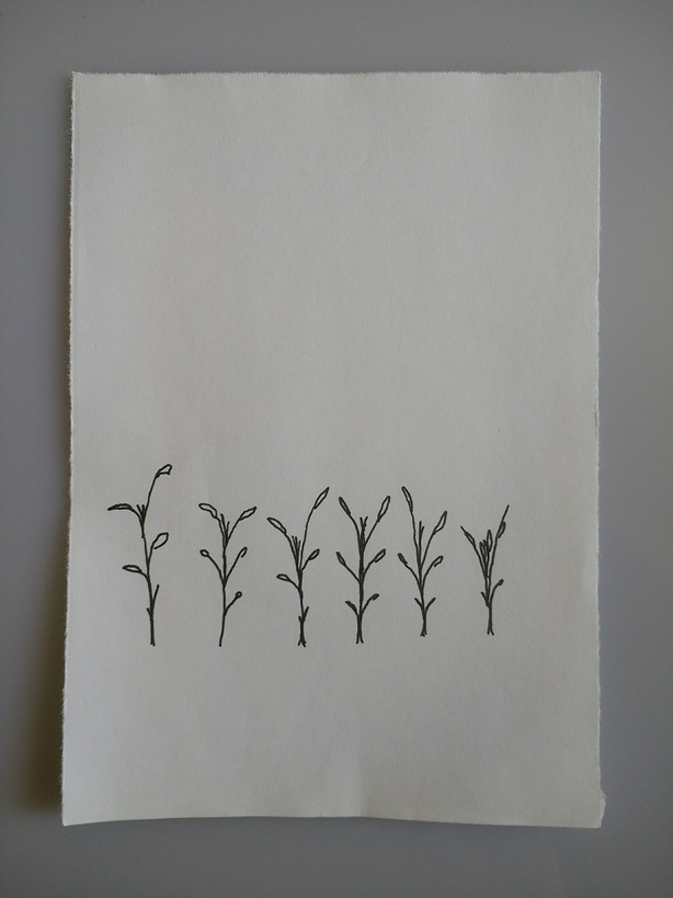 Plants growing (Part of an animation)
