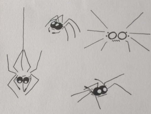 Spider in different poses