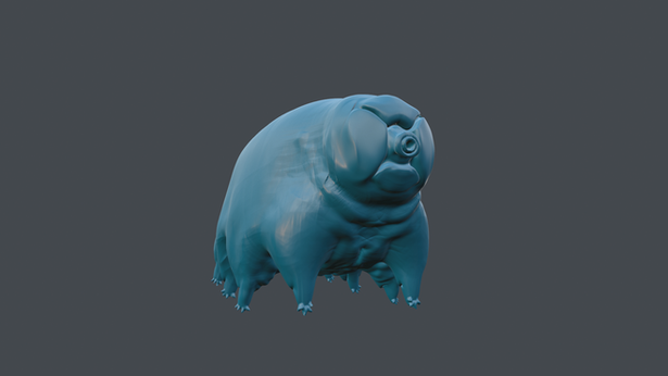 Tardigrade colour variants
