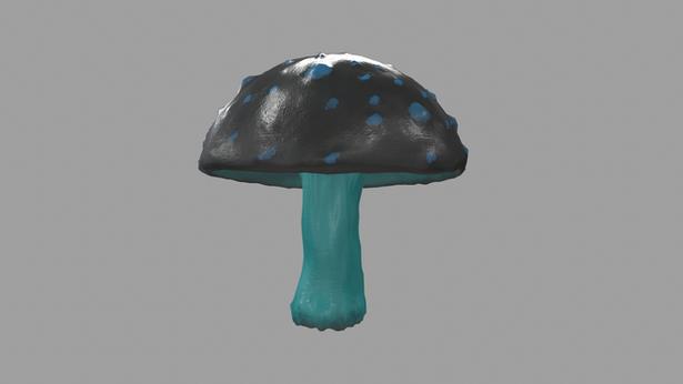 Mushroom colour variants