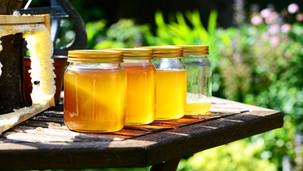 Cukr nebo med?