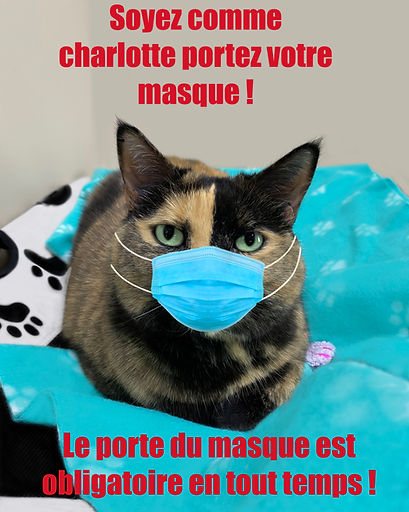 charlotte masque 2.jpg