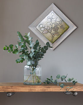 Rustic Cedar Frame Collection eucalyptus