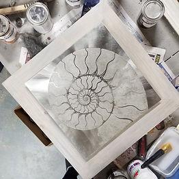 Framing the Nautilus.jpg