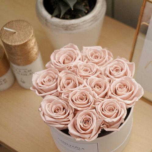 DOZEN ROSE BOX - nude pink -