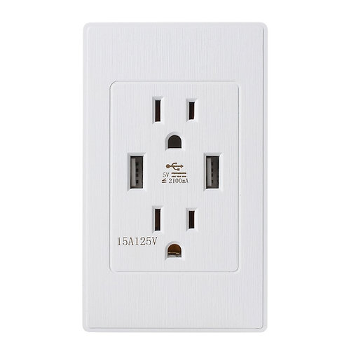 Standard outlet 2 Socket & Dual USB Ports Wall Mount Power Plate