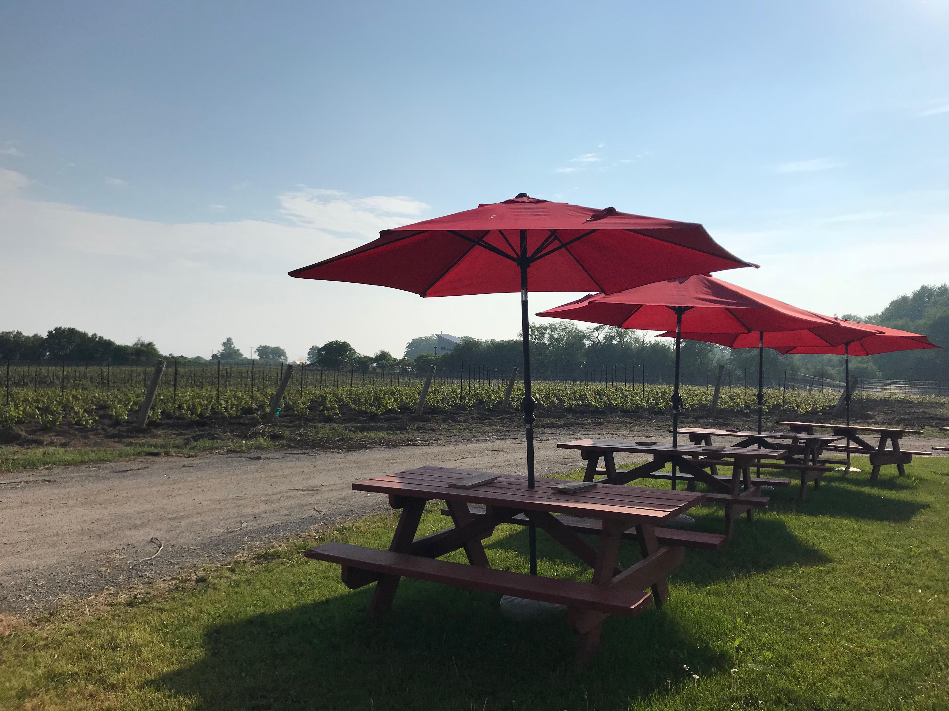 Full Day Wine Tour - Friday, October 12