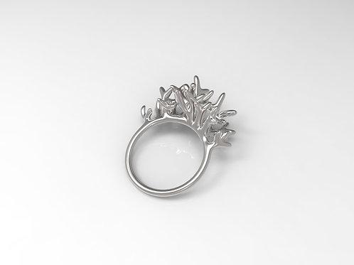 Ring Arboreus