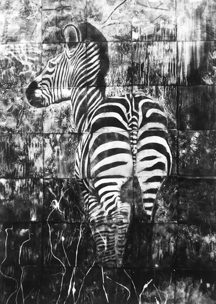 Zebra's bottom