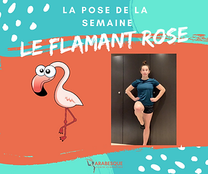 flamant rose.png