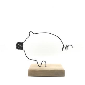 Moon Pig