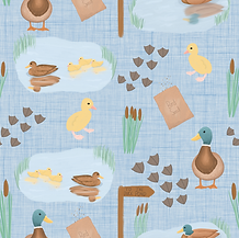To the Duck Pond - Sky Blue.png