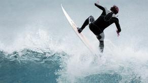 Les requins ne confondent pas surfeurs et otaries