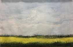 Summer Fields by Olds, 2017