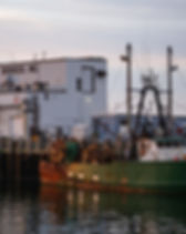 workingwaterfront8.jpg
