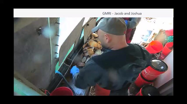 Electronic Monitoring in the Gulf of Maine Scallop Fishery