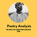 Tupac Poetry Analysis.png