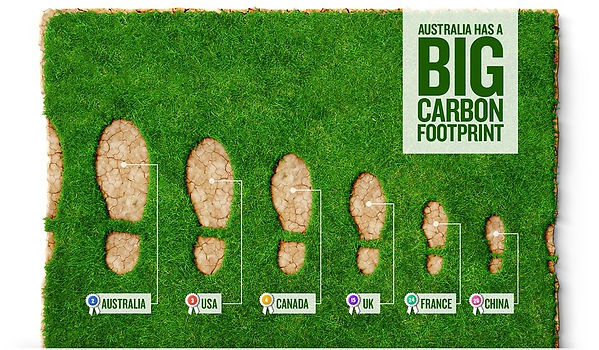 infographic-carbon-footprint.jpg