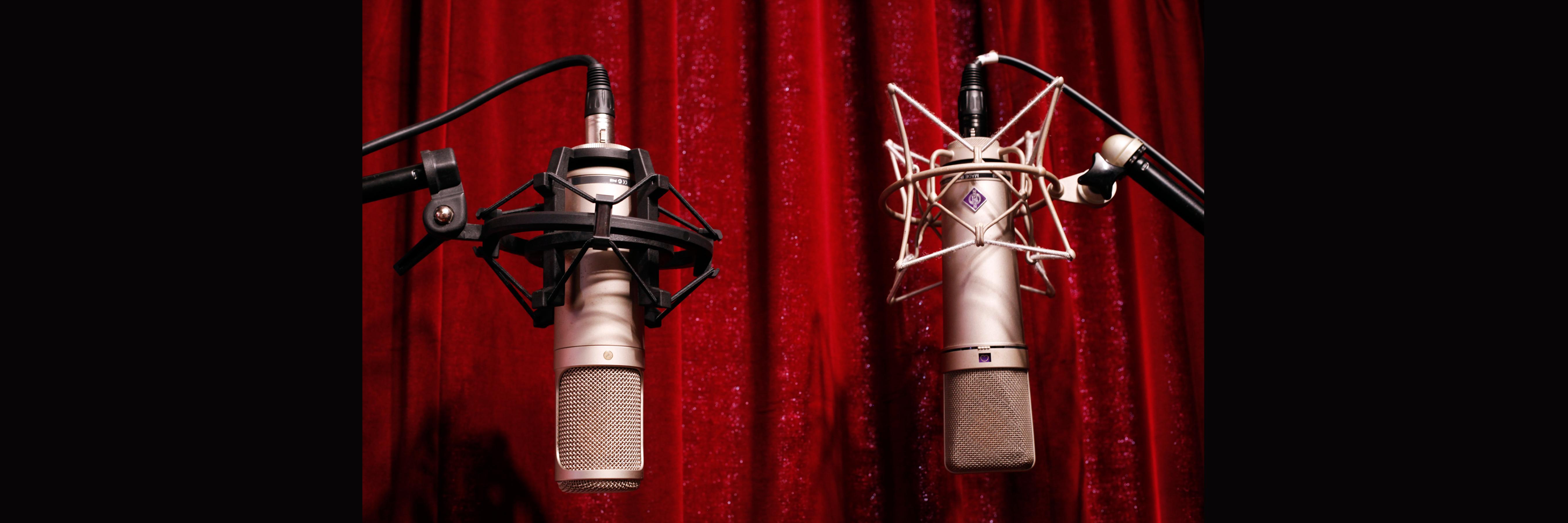 mics for WIX.jpg