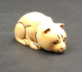 cat-minivory.jpg