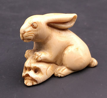 rabbiton.jpg