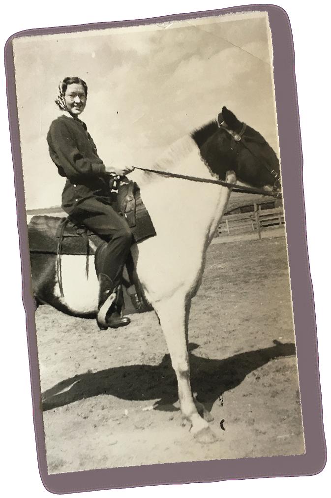 Audrey horse.png