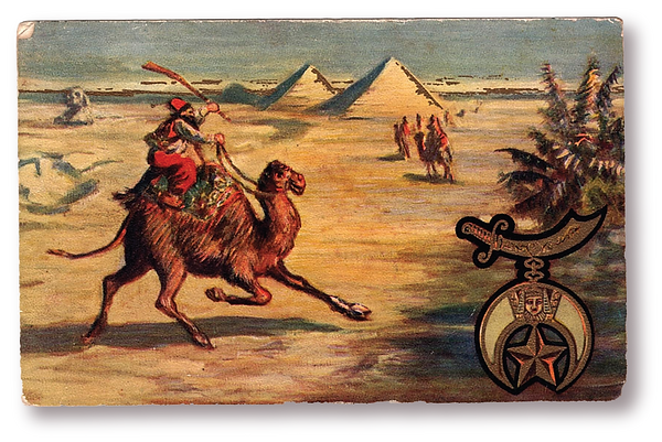 camel frnt.png