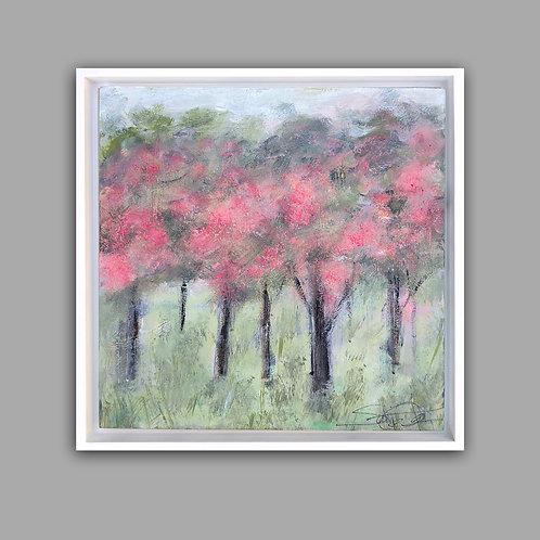 Blushing Meadow