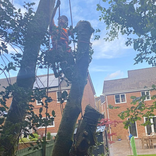 a day of lowering & rigging for maesteg council