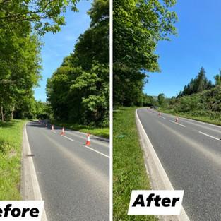 A470 Roadside tree clearence