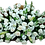 Thumbnail: Funeral-020