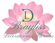 BRAYLISS LOGO FINAL.png