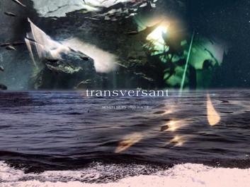 Knep music Best Album 『transversant – seven stars alignment 』