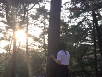 映画「Beginning of light-原初の光-」