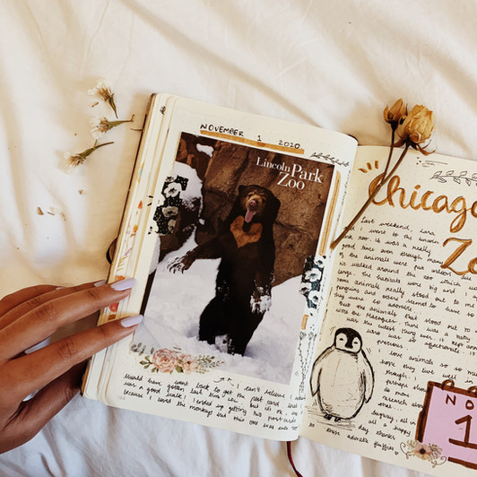 #JournalingPrompts: The Postcard Spread