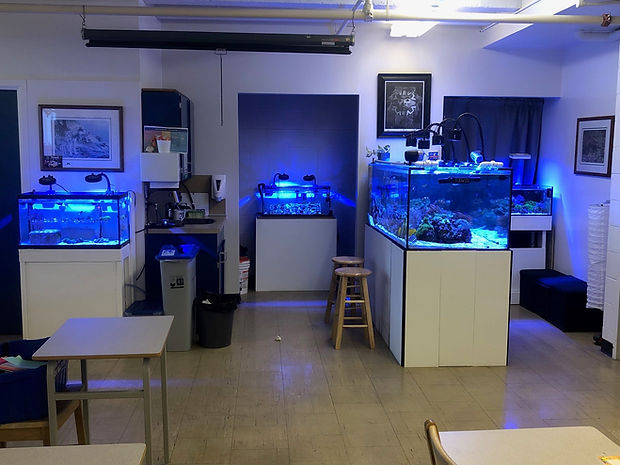 aqua lab.jpg