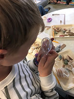 Mindful learning as students observe the wonders of our natural world.jpg